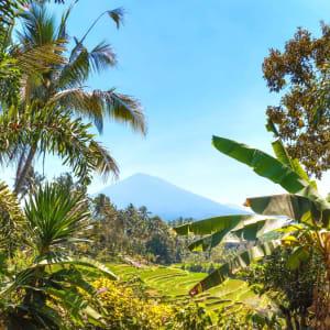 Soft Adventure Bali ab Süd-Bali: Indonesien Bali Batukaru