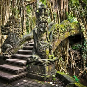 Soft Adventure Bali ab Süd-Bali: Indonesien Bali Ubud Affenwald