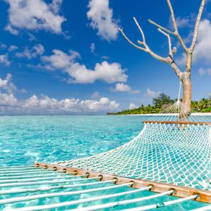 Glitzernder Perlen- & Blumenzauber ab Malediven: Malediven Insel Meer Haengematte