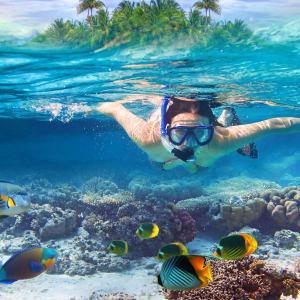 Glitzernder Perlen- & Blumenzauber ab Malediven: Malediven Unterwasserwelt