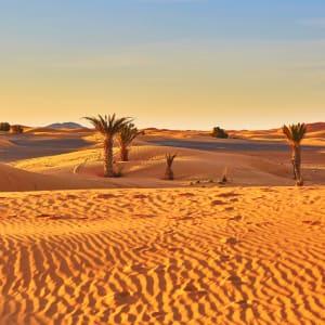 Marokko für Genießer: Die Glanzlichter des Königreichs ab Casablanca: Marokko Wüste nahe Merzouga
