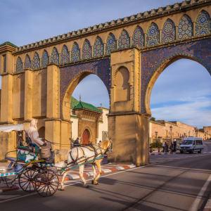 Königsstädte & Küste im Mietwagen ab Casablanca: Meknes Bab Moulay