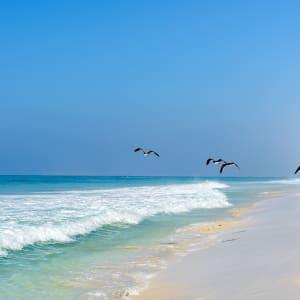 Abenteuer Dhofar - Küste & Wüste ab Salalah: Oman Dhofar Strand