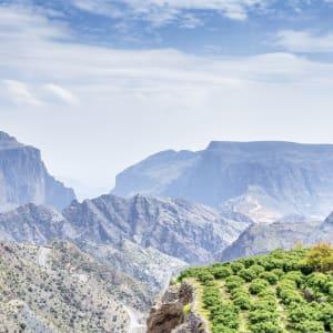 Natur & Kultur Oman ab Muscat: Oman Jebel Akhdar