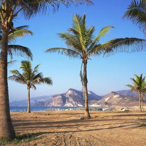 Abenteuer Dhofar - Küste & Wüste ab Salalah: Oman Salalah Umgebung