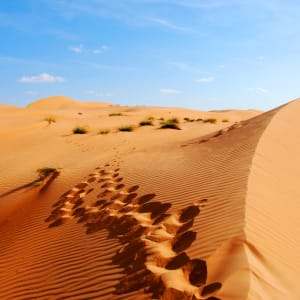 Abenteuer Dhofar - Küste & Wüste ab Salalah: Oman Spuren im Sand