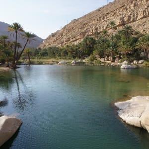 Natur & Kultur Oman ab Muscat: Oman Wadi Bani Khalid