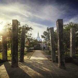 Sigiriya Jungles und Umgebung: Sri Lanka Anuradhapura