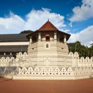 Naturpfade Sri Lankas ab Colombo: Sri Lanka Kandy Zahntempel