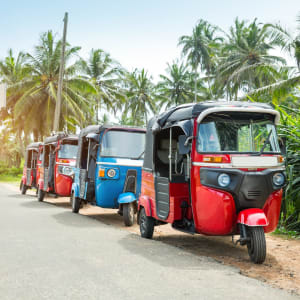Familienabenteuer Sri Lanka ab Colombo: Sri Lanka Tuktuk