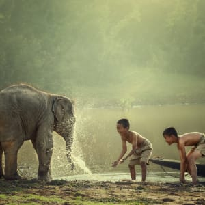 Soft Adventure Nordthailand ab Chiang Mai: Thailand Elefant mit Kinder