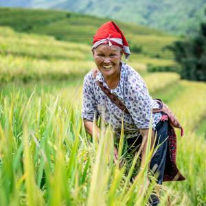 Topas Ecolodge in Hanoi: Vietnam Sapa Dao
