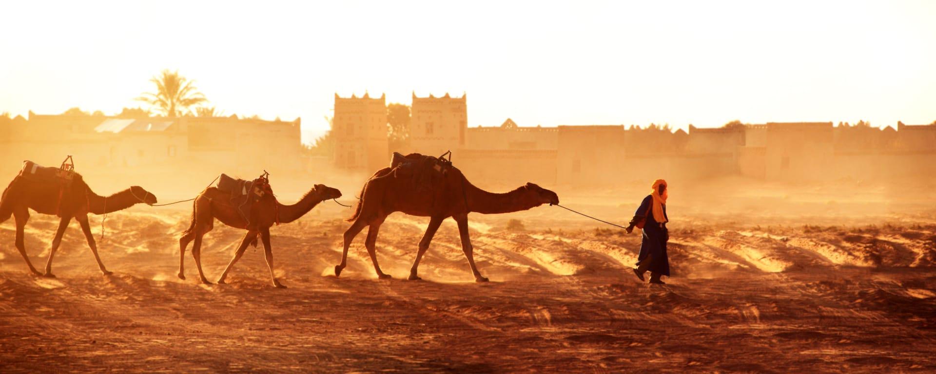 Südmarokko - Atlas & Wüste ab Marrakesch: Marokko Sueden Wueste