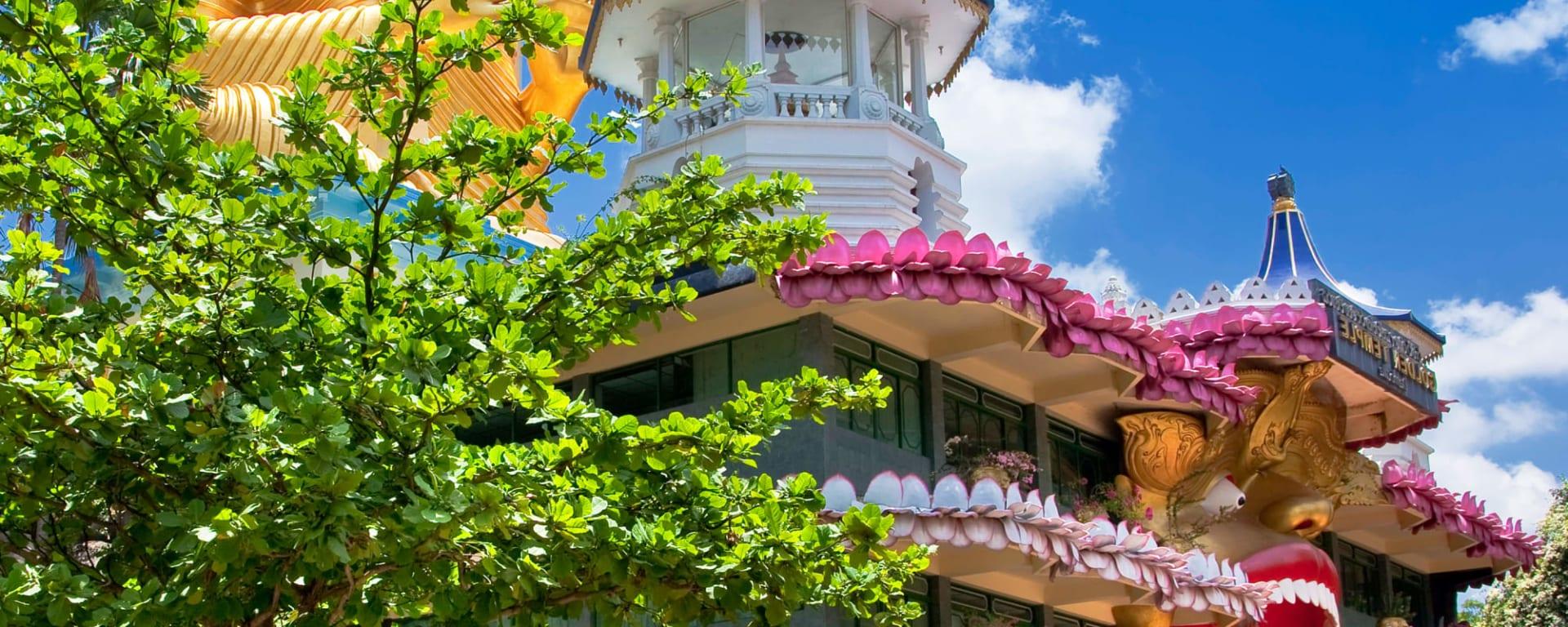 Familienabenteuer Sri Lanka ab Colombo: Sri Lanka Dambulla