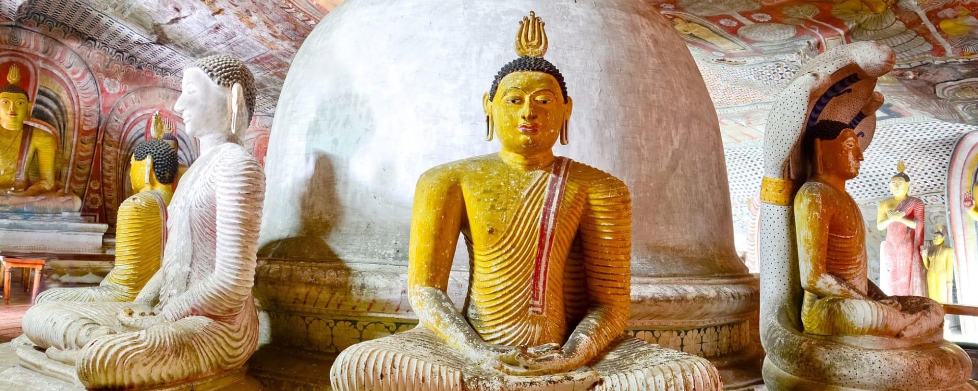 Sigiriya Jungles und Umgebung: Sri Lanka Dambulla