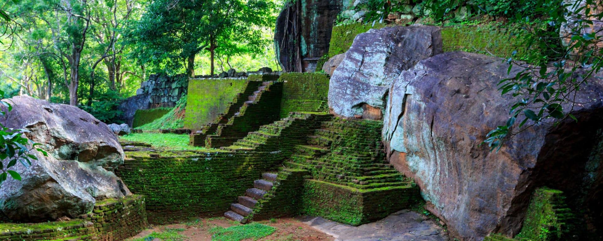 Sigiriya Jungles und Umgebung: Sri Lanka Sigiriya