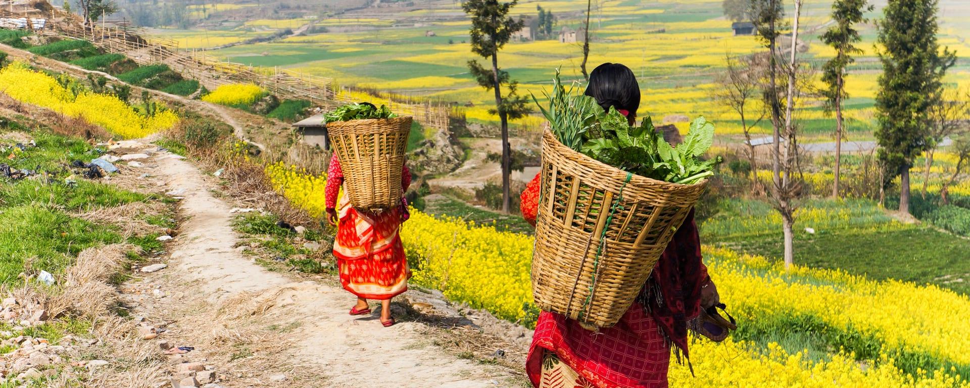 Nepal entdecken mit Tischler Reisen: Nepal Bauern auf dem Land