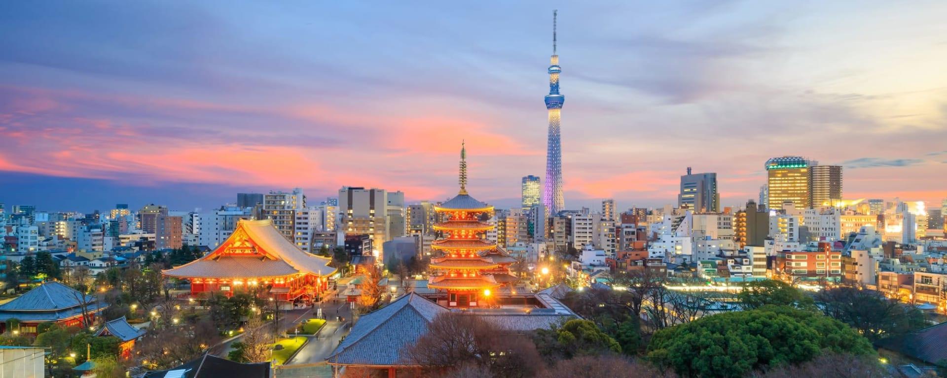 Stadtrundfahrt Tokio, EN, Ganztägig: Japan Tokio Skyline