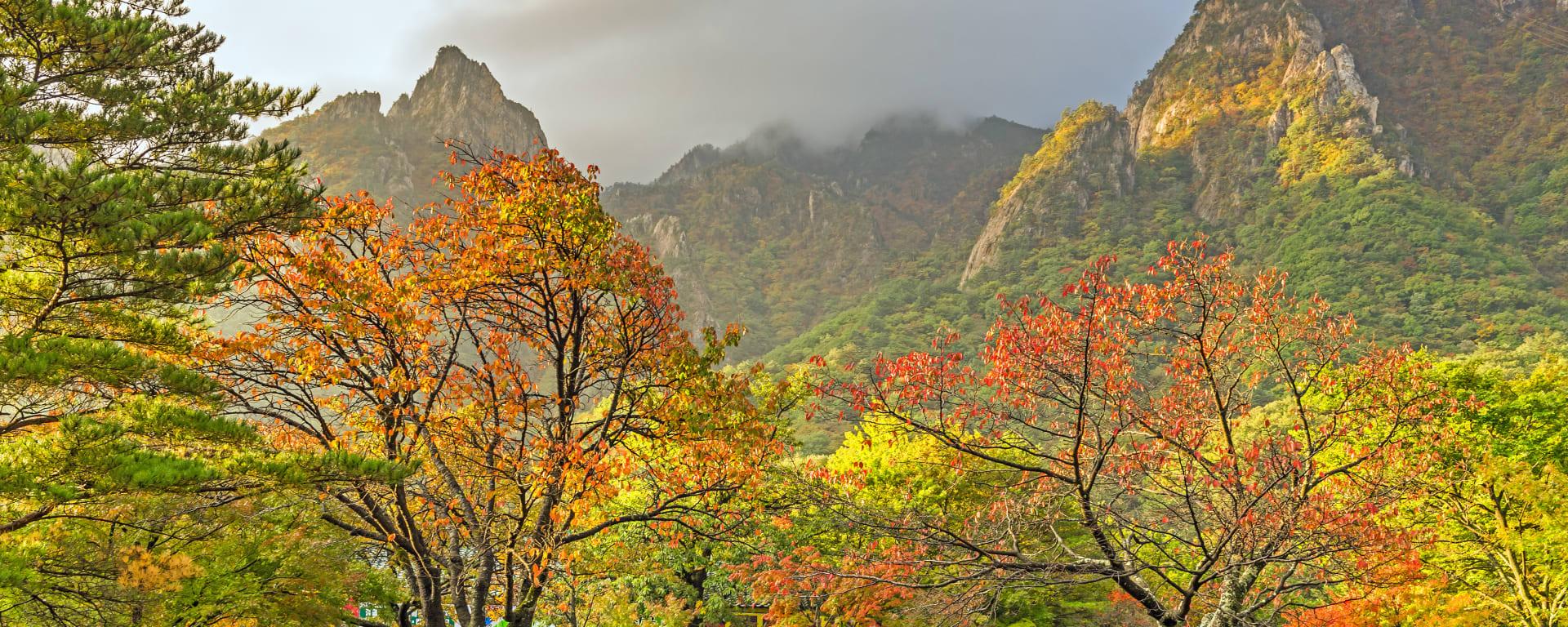 Unterwegs in Südkorea ab Seoul: Korea Seoraksan National Park