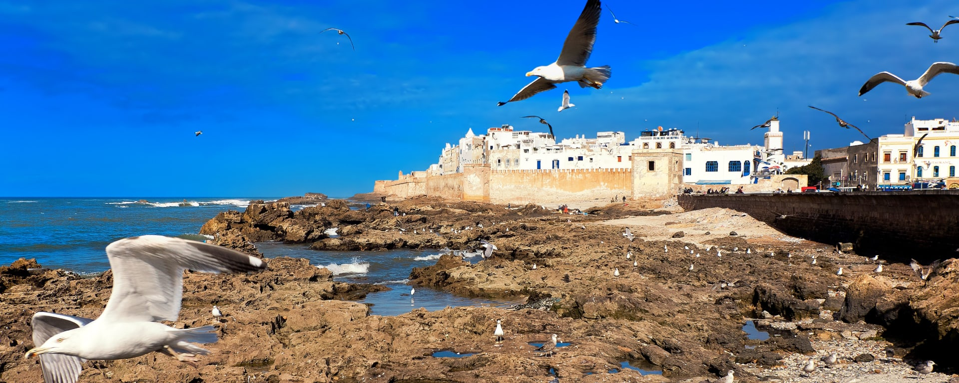 Marokko entdecken mit Tischler Reisen: Marokko Atlantikkueste Essaouira