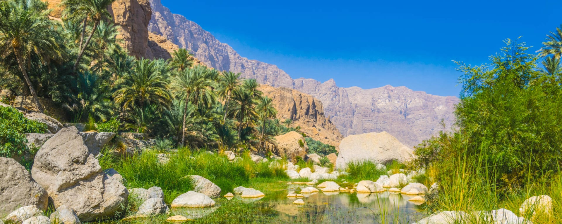 Natur & Kultur Oman ab Muscat: Oman Wadi Tiwi