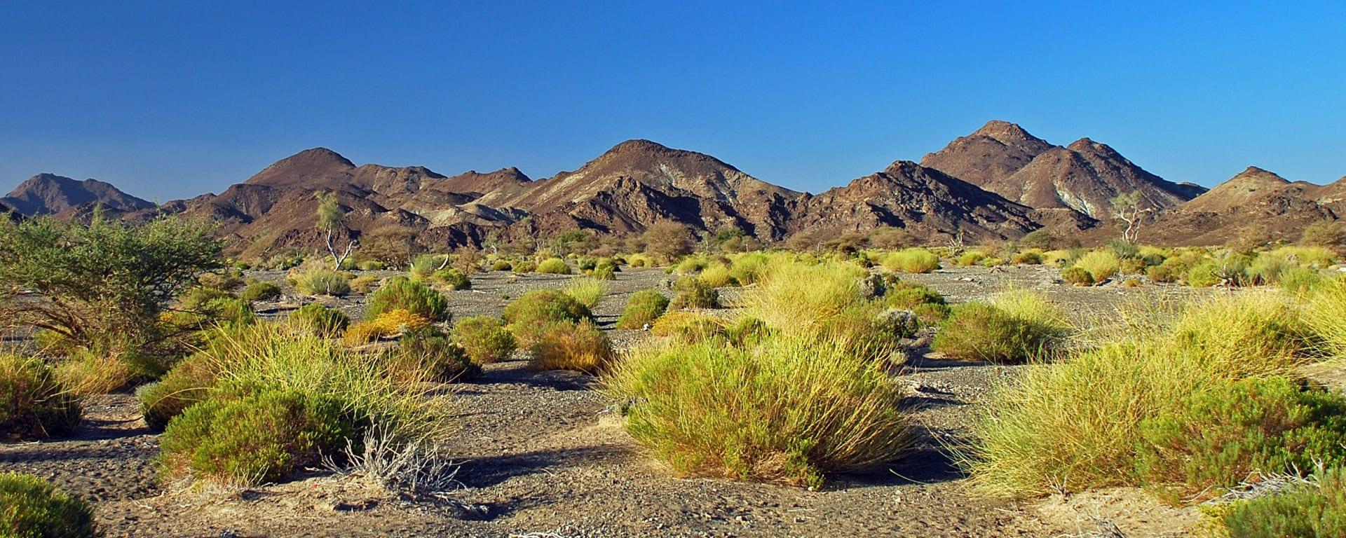 Rub al Khali, DE, Ganztägig in Salalah: Oman Rub al Khali Wüste