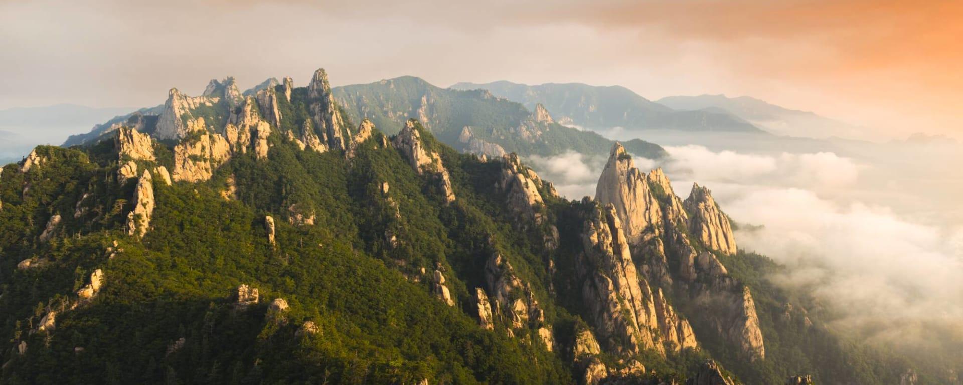 Südkorea entdecken mit Tischler Reisen: Südkorea Seoraksan Nationalpark