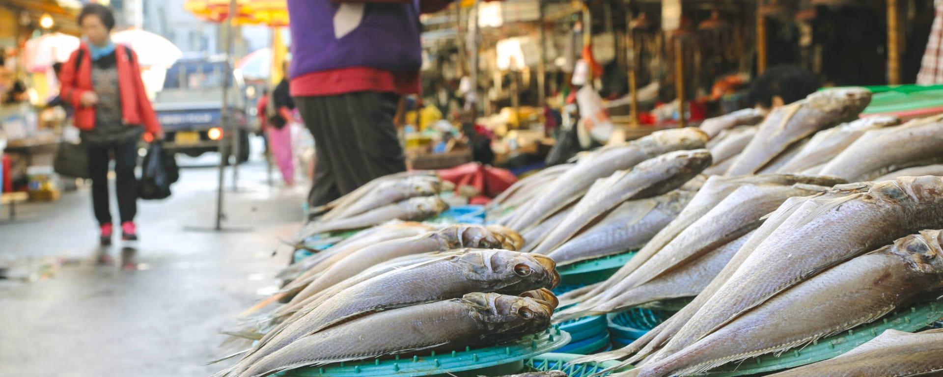 Klassisches Südkorea ab Seoul: Suedkorea Busan Jagalchi Fischmarkt
