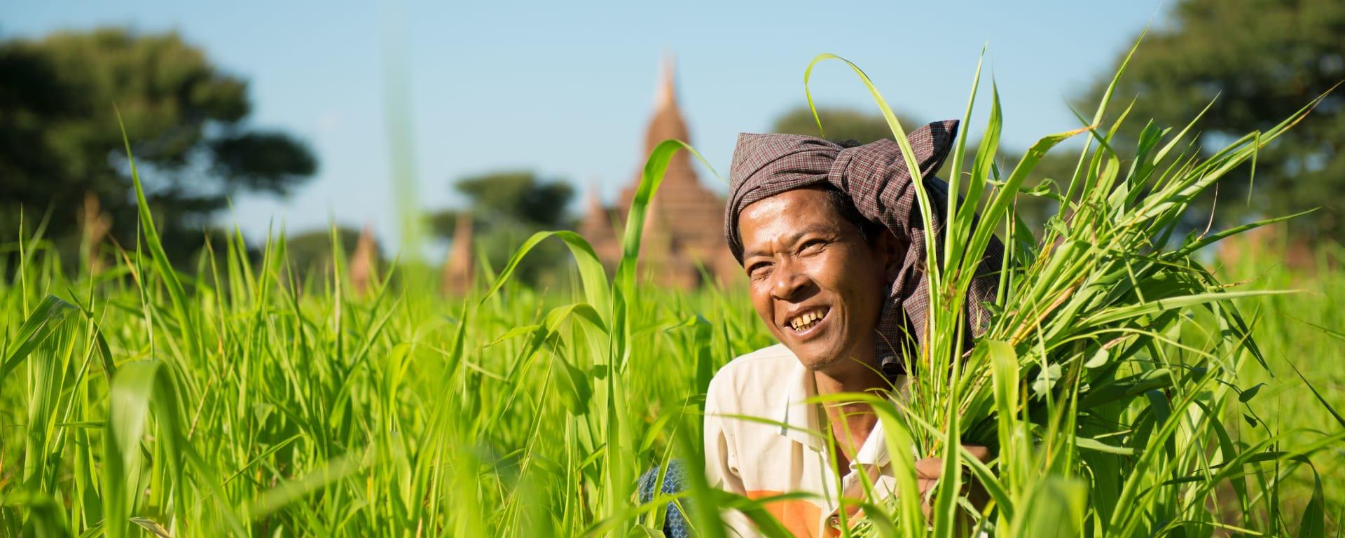 Myanmar entdecken mit Tischler Reisen: Myanmar Landleben Baeuerin