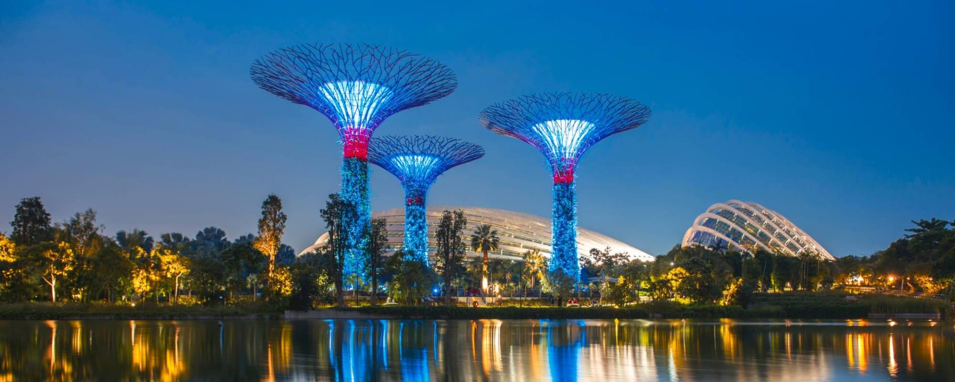 Singapur entdecken mit Tischler Reisen: Singapur Gardens by the Sea Supertrees