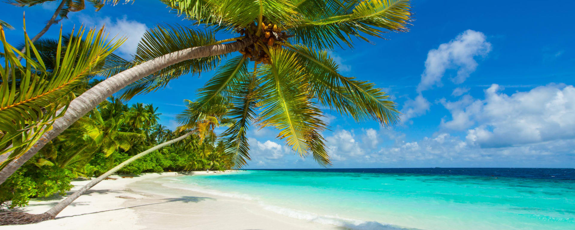 Glitzernder Perlen- & Blumenzauber ab Malediven: Malediven Traumstrand