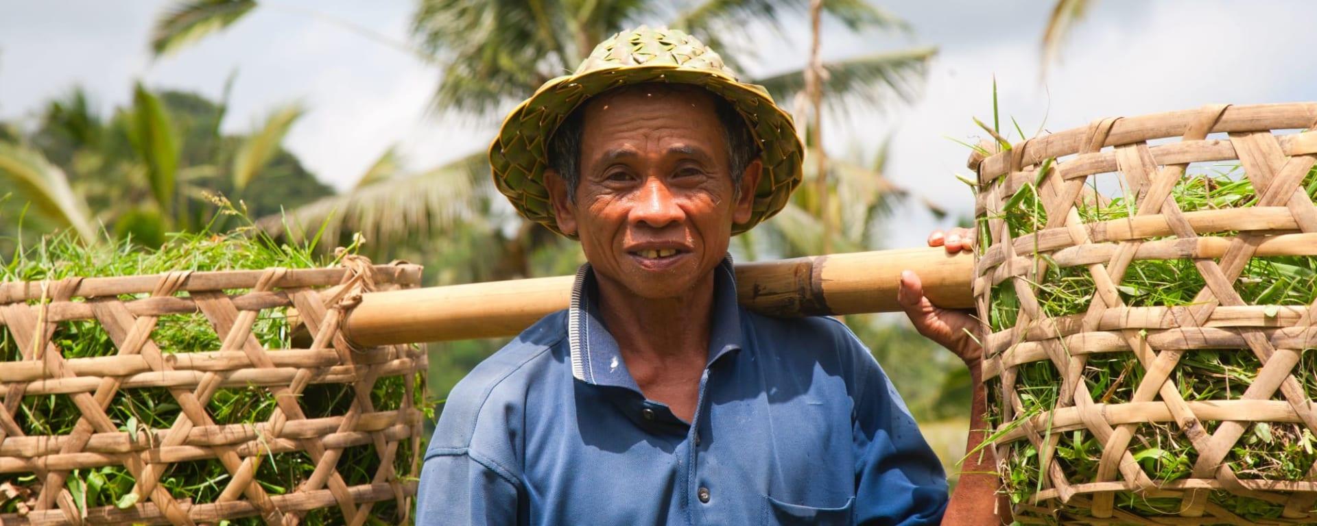 Soft Adventure Bali ab Süd-Bali: Indonesien Bali Reisfarmer