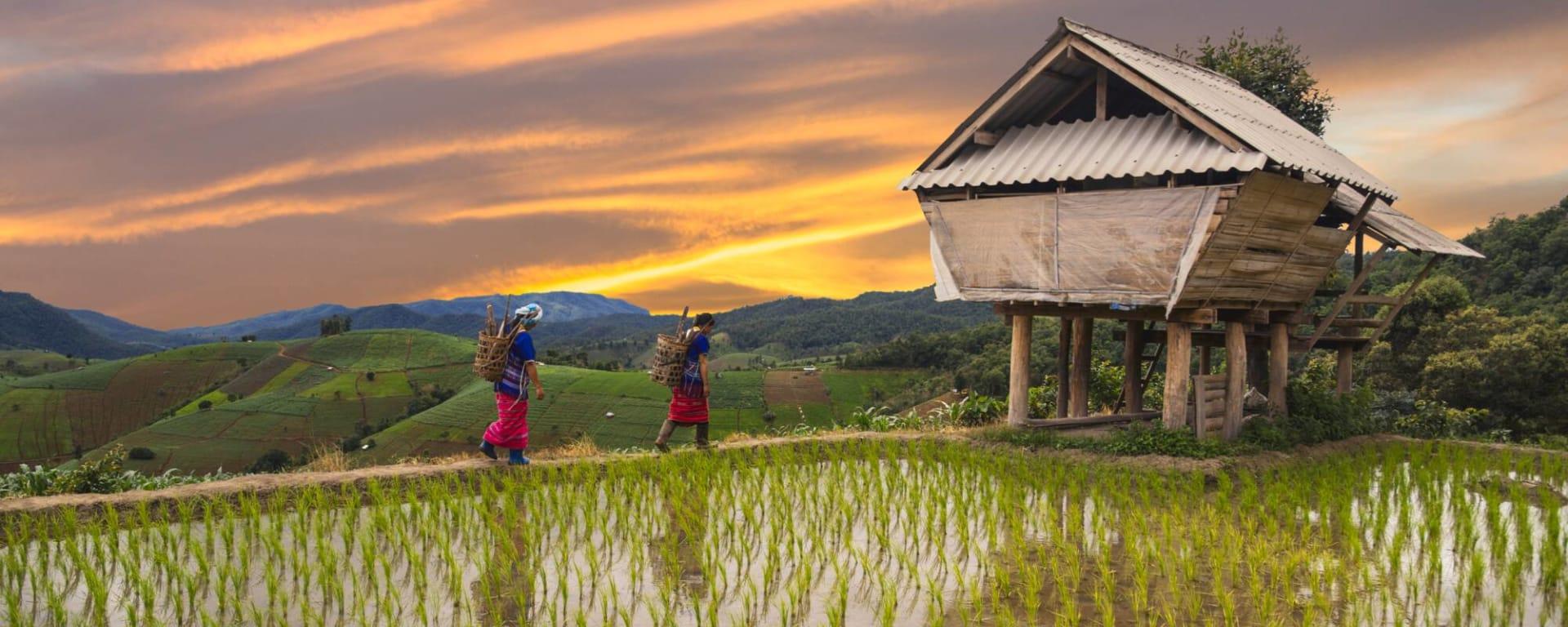 Thailand entdecken mit Tischler Reisen: Thailand Bergvölker Mae Hong Son