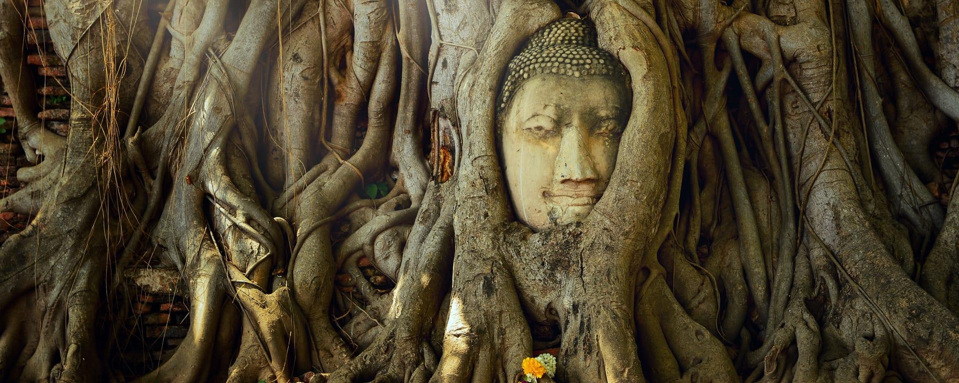 Thailand entdecken mit Tischler Reisen: Thailand Ayutthaya Wat Mahathat