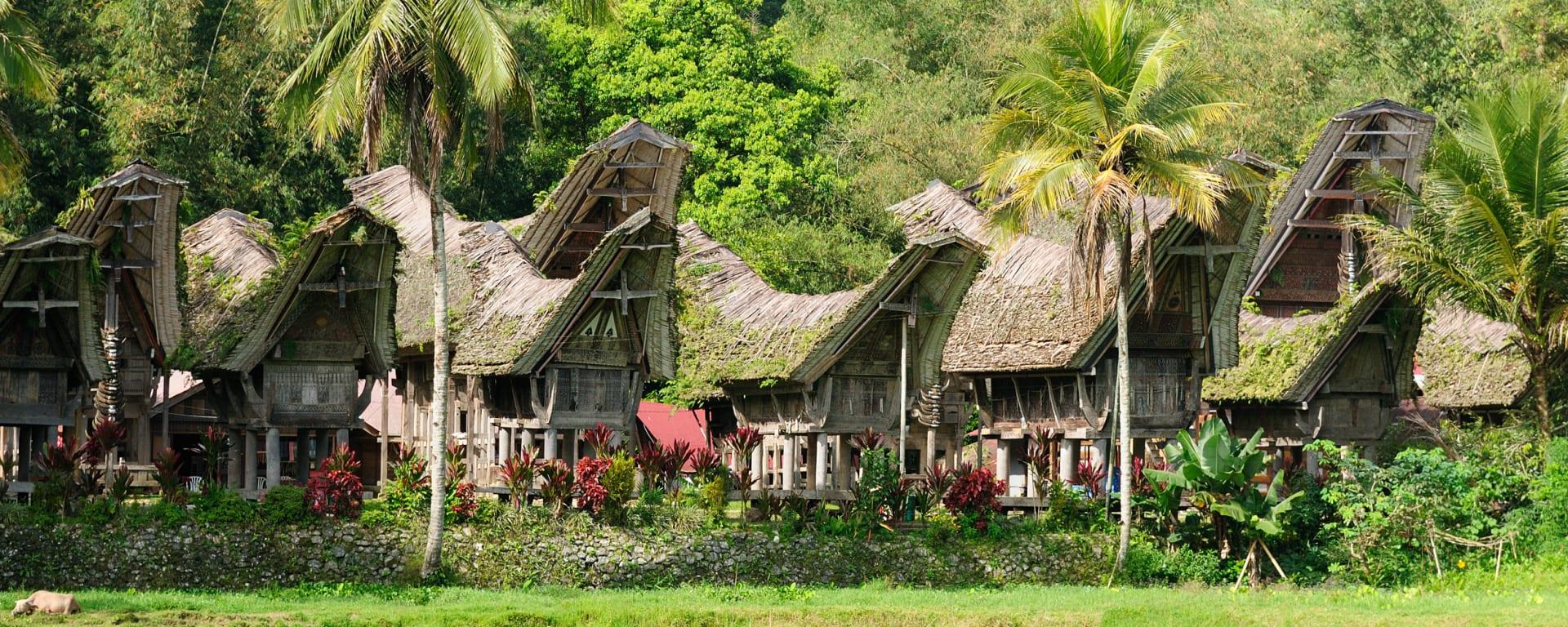 Torajaland & Sengkang ab Makassar: Indonesien Toraja Dorf Sulawesi
