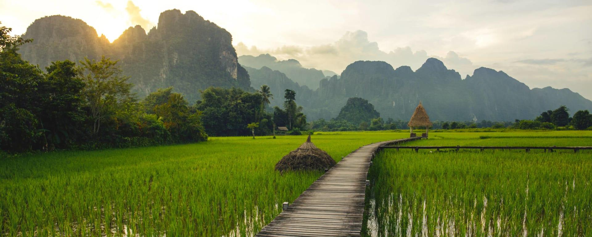 Überland von Luang Prabang nach Vientiane: Laos Vang Vieng Reisfeld