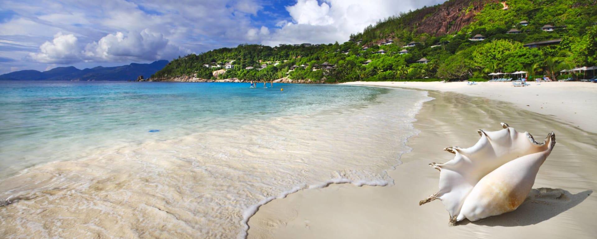 Seychellen entdecken mit Tischler Reisen: Seychellen Muschel am Strand