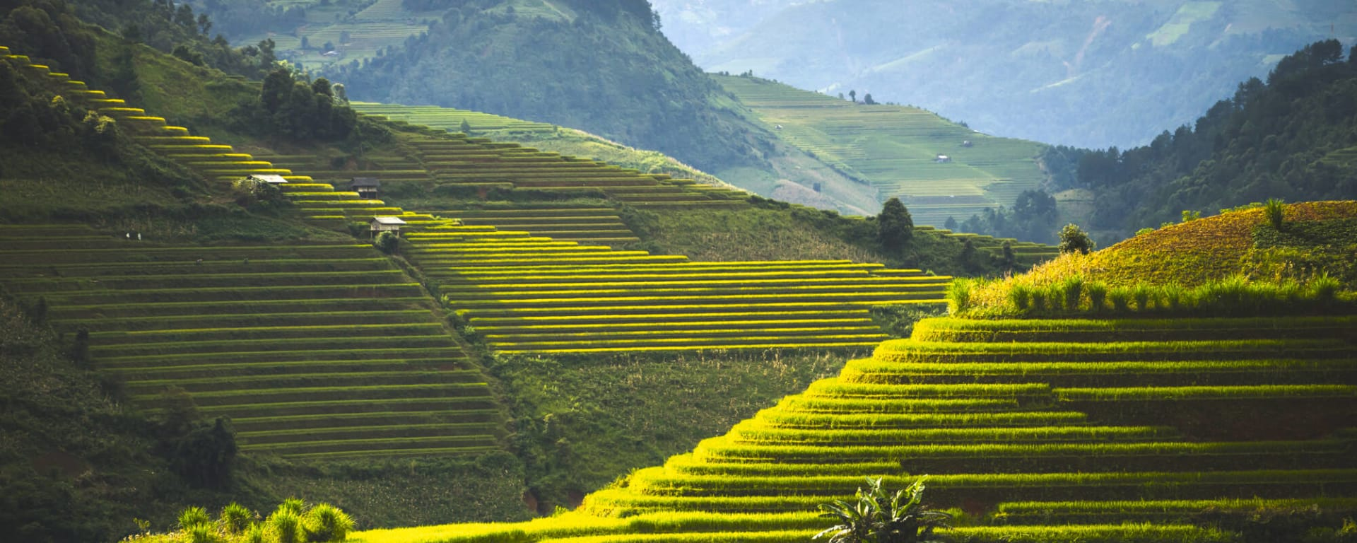 Philippinen entdecken mit Tischler Reisen: Philippinen Nord Luzon Reisterrassen
