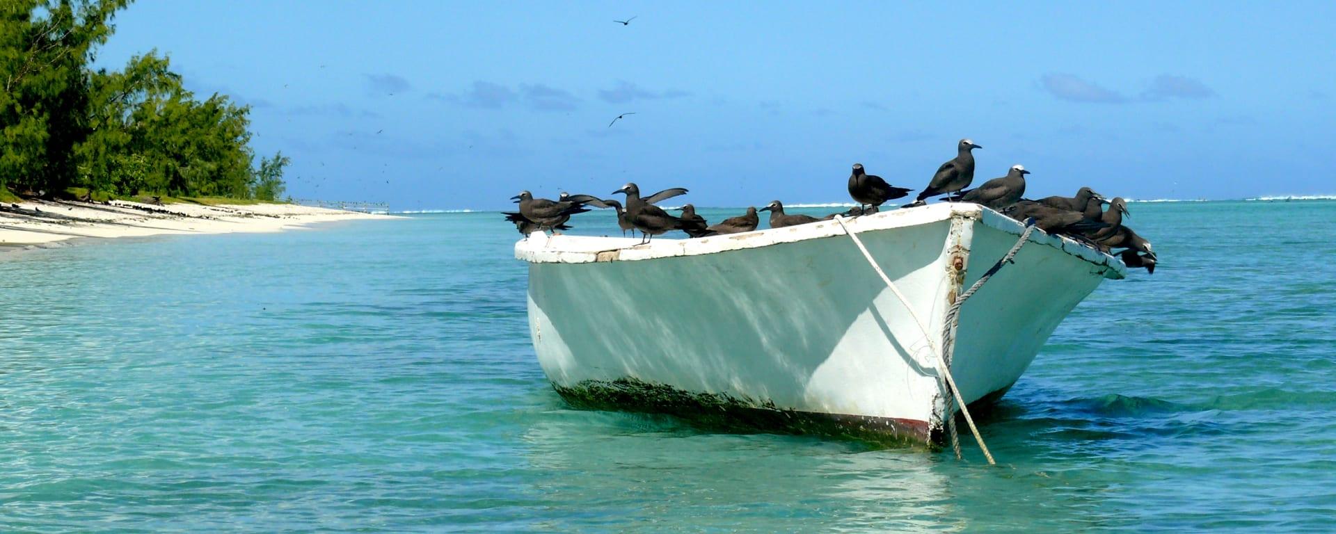 Rodrigues entdecken mit Tischler Reisen: Rodrigues Ile aux Cocos