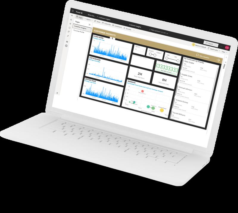 Customer Insights laptop image