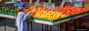 farmers-market-guide