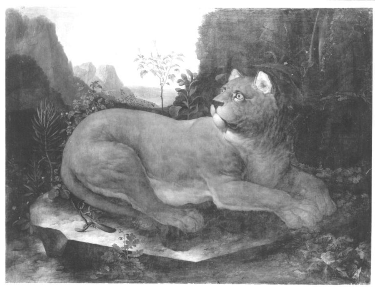 Eine Löwin