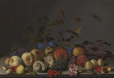Stillleben mit Früchten und Seeschneckenhäusern