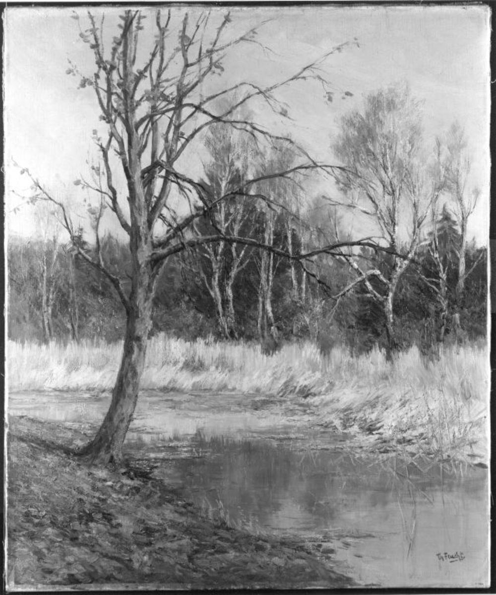 Vorfrühling im Englischen Garten (Weiher mit Birken)