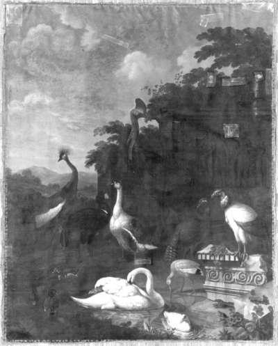 Vögel aus der Menagerie zu Nymphenburg