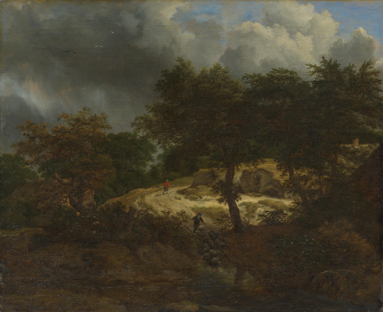 Waldlandschaft mit aufsteigendem Gewitter