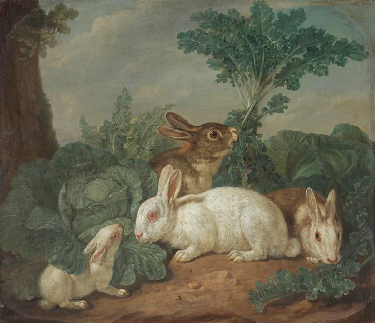 Hasen-Tierstück