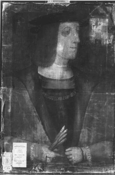 Philipp von Böhmen, Sohn Kaiser Maximilians I.