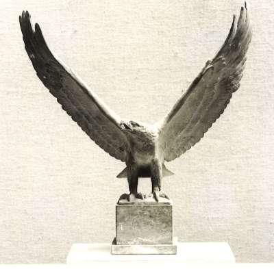 Auffliegender Adler