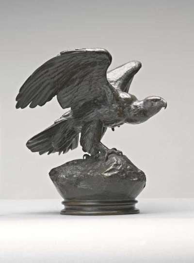 Adler, die Schwingen breitend